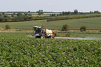 18.7.2021 Contractor spraying potatoes for blight <br /> ©Tim Scrivener Photographer 07850 303986<br />      ....Covering Agriculture In The UK....