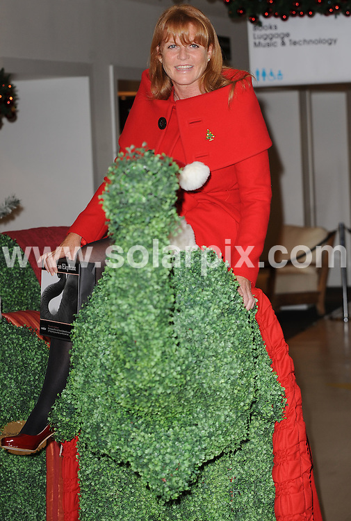 **ALL ROUND PICTURES FROM SOLARPIX.COM**.**WORLDWIDE SYNDICATION RIGHTS**.Sarah Ferguson, The Duchess of York, poses for the media at Selfridges, Oxford Street for the opening of the Selfridges' Christmas Shop and Toy Shop and the arrival of UK charity Elephant Family's installation of life sized artificial topiary elephants. She will also promote the sale of the Date an Elephant gift box which is this year's 'greenest' stocking filler. August 07, 2008..This pic: Sarah Ferguson..JOB REF: 6977 SSD     DATE: 07_08_2008.**MUST CREDIT SOLARPIX.COM OR DOUBLE FEE WILL BE CHARGED* *UNDER NO CIRCUMSTANCES IS THIS IMAGE TO BE REPRODUCED FOR ANY ONLINE EDITION WITHOUT PRIOR PERMISSION*