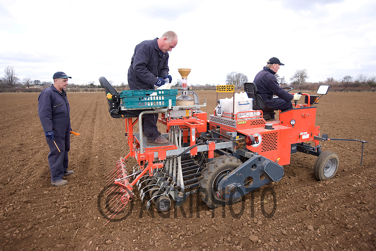 Drilling Spring Barley In Lincolnshire