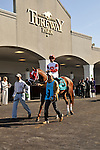 27 March 2010: Dean's Kitten with Cornelio Velasquez up in  the paddock for the 39th running of the G2 Lane's End Stakes at Turfway Park in Florence, Kentucky.