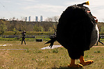 "Black Bird walking with the Four Towers Bussines Area behind during the presentation of the film ""Angry Birds"" at Hipodromo de Zarzuela in Madrid. April 25,2016. (ALTERPHOTOS/Borja B.Hojas)"