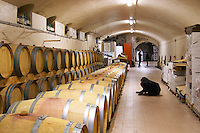 Chateau Mansenoble. In Moux. Les Corbieres. Languedoc. Barrel cellar. France. Europe.