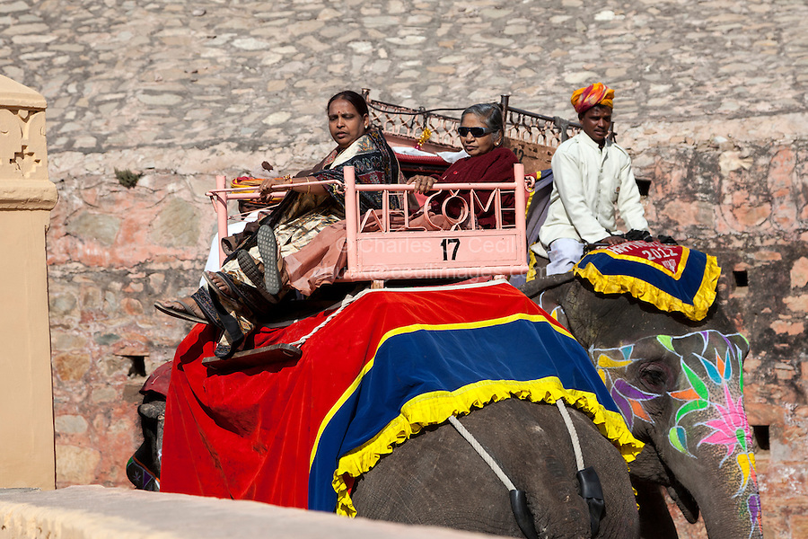 Amber (or Amer) Palace, near Jaipur, Rajasthan, India.  Indians as well as foreigners ride elephants up the steep path to the palace.