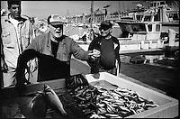 Europe/France/Provence-Alpes-Côte d'Azur/13/Bouches-du-Rhône/Marseille:Marché au poisson sur le Vieux Port [Non destiné à un usage publicitaire - Not intended for an advertising use]