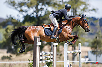 NZL-Rylee Sheehan rides Bandito NZPH. Final-1st. Class 5: FMG Young Rider Series - Sponsored by Auckland Animal Eye Centre. 2021 NZL-Auckland Veterinary Centre Brookby SJ Grand Prix Show. Papatoetoe, Auckland. Saturday 13 February. Copyright Photo: Libby Law Photography