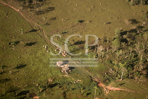 Amazon, Brazil. Aerial view of a small farm settlement with cattle grazing near the shack farmhouse.