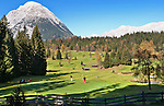 Austria, Tyrol, Moesern near Seefeld in Tyrol: Golf course | Oesterreich, Tirol, Moesern bei Seefeld in Tirol: Golfplatz
