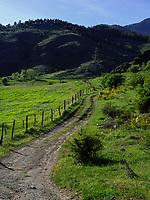 bei Fleasaburg am Fluss Mtkavari - Kura, Samzche-Dschawacheti, Georgien, Europa<br /> near Flasaburg  at river Mtkwari-Kura, Samzche-Dschawacheti,  Georgia, Europe