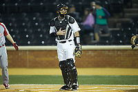 Wake Forest Demon Deacons catcher Brendan Tinsman (9) on defense against the Sacred Heart Pioneers at David F. Couch Ballpark on February 15, 2019 in  Winston-Salem, North Carolina.  The Demon Deacons defeated the Pioneers 14-1. (Brian Westerholt/Four Seam Images)