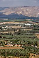 Asie/Israël/Galilée/Tibériade: cultures d'un kibboutz prés du lac de Tibériade et en fond les monts du Golan