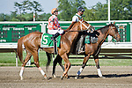 30 MAY 2010: Just Jenda, Terry Thompson up, in the post parade before winning the Monmouth Beach Stakes at Monmouth Park.