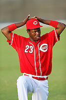 Aristides Aquino #23 of the AZL Reds before a game against the AZL Padres at the Cincinnati Reds Spring Training Complex on July 13, 2013 in Goodyear, Arizona. AZL Reds defeated the AZL Padres, 11-10. (Larry Goren/Four Seam Images)