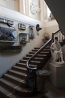 Victorian glass display cases containing an assortment of stuffed birds and animals are mounted on the wall of the staircase
