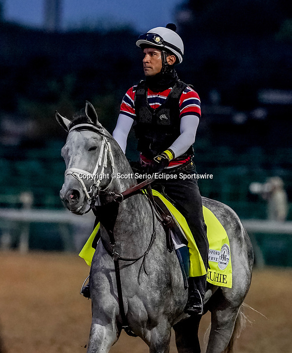 August 30, 2020: Rushie jogs as horses prepare for the 2020 Kentucky Derby and Kentucky Oaks at Churchill Downs in Louisville, Kentucky. The race is being run without fans due to the coronavirus pandemic that has gripped the world and nation for much of the year. Scott Serio/Eclipse Sportswire/CSM