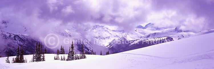 Ski Runs on Blackcomb Mountain, Whistler Ski Resort, BC, British Columbia, Canada - Panoramic View of Coast Mountains