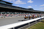 18 October 2009: Horses race toward the wire in a claiming race at Keeneland. The beautiful autumn weather and a great day of horse racing have the fans happy, cheerful and excited.
