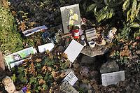 """- la tomba di Augusto Daolio, cantante del gruppo """"I Nomadi"""" morto nel 1992 nel cimitero di Novellara (Reggio Emilia) con i messaggi lasciati dai suoi fans<br /> <br /> - the grave of Augustus Daolio, lead singer of the group """"The Nomads"""" who died in 1992 in the cemetery of Novellara (Reggio Emilia) with messages left by her fans"""