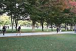 Fall Campus Shots 2015
