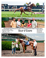 Soup d'Coupe winning at Delaware Park on 6/27/13