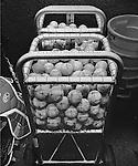 A basket of baseballs in the North Carolina dugout.