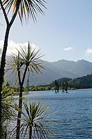 Lake Poerua between Jackson's and Moana.