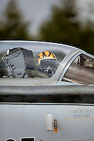 Pilot with tiger helmet. Nato Tiger Meet is an annual gathering of squadrons using the tiger as their mascot. While originally mostly a social event it is now a full military exercise. Tiger Meet 2012 was held at the Norwegian air base Ørlandet.