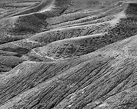 """""""Hills Along a Backroad in Utah""""<br /> <br /> I drove some backroads in Utah during the fall of 2019 and saw a huge number of sites to photograph. This scene was photographed from a roadside and shows small hills and low plants."""