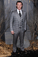 """HOLLYWOOD, CA - DECEMBER 02: Luke Evans arriving at the Los Angeles Premiere Of Warner Bros' """"The Hobbit: The Desolation Of Smaug"""" held at Dolby Theatre on December 2, 2013 in Hollywood, California. (Photo by Xavier Collin/Celebrity Monitor)"""