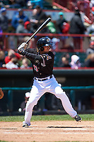 Erie Seawolves shortstop Curt Powell (33) at bat during a game against the Richmond Flying Squirrels on May 20, 2015 at Jerry Uht Park in Erie, Pennsylvania.  Erie defeated Richmond 5-2.  (Mike Janes/Four Seam Images)