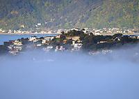 211005 Wellington Fog