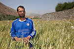 13 June 2013, Onaba Village, Onaba District, Panjshir Province,  Afghanistan.  Local village man Mohammad Panjshiri stands in his wheat fields along the wall of the irrigation canal the villagers have built alongside the Panjshir River at their village of Onaba in Onaba District. The water is used to feed their crops which is wheat at the moment.  Canals are being built and rehabilitated under the Irrigation Restoration and Development Project (IRDP). While some donors are supporting reconstruction/development of specific rivers the Emergency Irrigation Rehabilitation Project (EIRP) is instrumental in the Govt of Afghanistan's launch of a national irrigation scheme. Typical rehabilitation works would include improving canal intake structures, conveyance channels and aqua ducts. Picture by Graham Crouch/World Bank