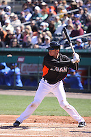 Miami Marlins Rob Brantley (19) at bat against the New York Mets during a spring training game at the Roger Dean Complex in Jupiter, Florida on March 3, 2013. Miami defeated New York 6-4. (Stacy Jo Grant/Four Seam Images)........