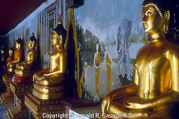 GALLERY of GOLDEN BUDDHAS ALONG MURAL at WAT DOI SUTHEP
