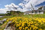 The Boathouse Cafe, Ulva, Isle of Mull, Scotland. June