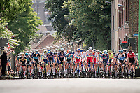 peloton up the Wijnpersstraat<br /> <br /> 55th Grote Prijs Jef Scherens - Rondom Leuven 2021 (BEL)<br /> One day race from Leuven to Leuven (190km)<br /> ridden over the final circuit of the 2021 World Championships road races <br /> <br /> ©kramon
