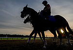 June 7, 2019 : Horses enter the track just after sunrise as horses prepare for the Belmont Stakes on Belmont Stakes Festival Weekend at Belmont Park in Elmont, New York. Scott Serio/Eclipse Sportswire/CSM