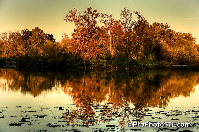 Fall in Misouri
