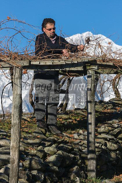 Italie, Val d'Aoste, Morgex: Ermes Pavese,  dans ses vignes du hameau de Villaret avec en fond le Mont Blanc // Italy, Aosta Valley, Morgex: <br /> Ermes Pavese, in vineyards, village of Villaret with Mont Blanc in the background