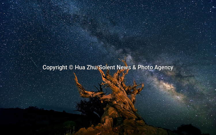 Pictured: The Milky Way at White Mountains, California<br /> <br /> This beautiful series of photographs shows the Milky Way as seen from different continents around the world.   Photographer Hua Zhu travelled the globe over the course of four years to capture the starry night sky from already stunning locations. <br /> <br /> The medical professor visited picturesque landmarks in the USA, Kenya, New Zealand and China, including the Great Wall in Beijing.  Chinese Dr Zhu, who lives in New Jersey, USA, said he meticulously planned the trips by researching when the Milky Way would be on show.   SEE OUR COPY FOR DETAILS<br /> <br /> Please byline: Hua Zhu/Solent News<br /> <br /> © Hua Zhu/Solent News & Photo Agency<br /> UK +44 (0) 2380 458800