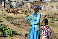 ETHIOPIA, Tigray, town Adigrat, woman irrigate vegetable garden/ AETHIOPIEN, Tigray, Adigrat, Frau bewässert Gemüsegarten