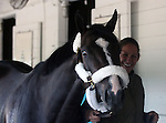 April 28, 2015  Upstart arrives in Louisville.  Owner Jose L. Ortiz, trainer Richard Violette. By Flatter x Party Silks (Touch Gold) ©Mary M. Meek/ESW/CSM
