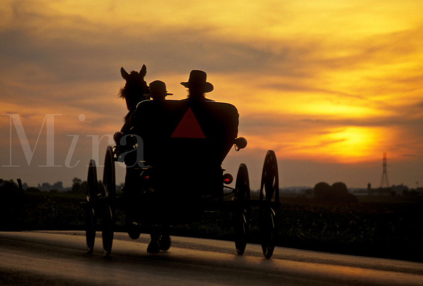 AJ3024, amish, buggy, silhouette, Amish country, Lancaster County, Pennsylvania, Pennsylvania Dutch Country, A silhouette of an Amish couple riding in an open buggy on a country road at sunset (sunrise) in Lancaster in the state of Pennsylvania.