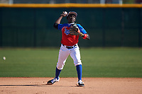 Damaal-Jordan Sands during the Under Armour All-America Tournament powered by Baseball Factory on January 18, 2020 at Sloan Park in Mesa, Arizona.  (Zachary Lucy/Four Seam Images)