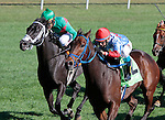 LEXINGTON, KY - OCTOBER 08: #12 Mongolian Saturday and jockey Carlos Montalvo win the 20th running of the Woodford Presented by Keeneland Select (Grade 3) $150,000 for owner Mongolian Stable and trainer Enebish Ganbat at Keeneland Race Course in Lexington, KY.  October 8, 2016, Lexington, Kentucky. (Photo by Candice Chavez/Eclipse Sportswire/Getty Images)