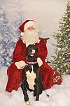 Zionsville Country Kennel Santa 2020