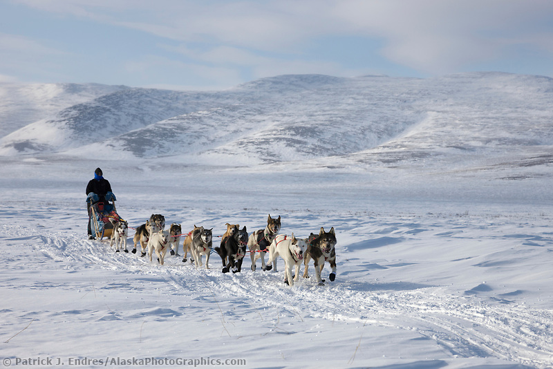 Mushers Cari Miller passes through Death Valley and the Bendeleben mountains, during the 2008 All Alaska Sweepstakes sled dog race.