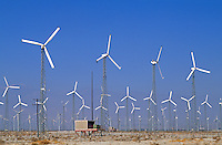 Wind collection mills for electricity energy in desert of Californi