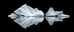 Iceberg reflection, Northeast Greenland