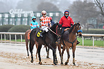 February 27, 2021: #6, Woodhouse in the post parade of the Southwest Stakes (Grade 3) at Oaklawn Park in Hot Springs, Arkansas. Ted McClenning/Eclipse Sportswire/CSM