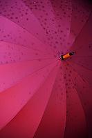 Detail of a dark pink umbrella, which patterns when wet.
